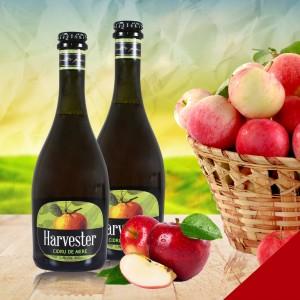 Cidru de mere – HARVESTER 0,5l